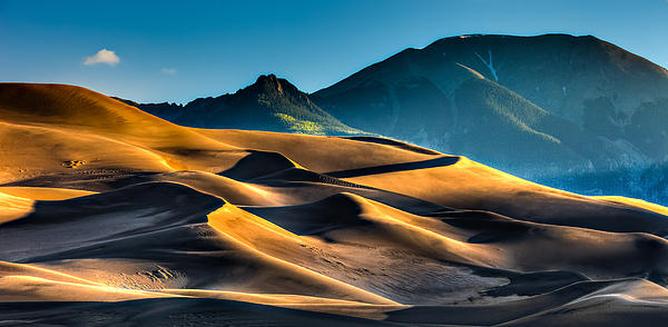 Great Sand Dunes at Dawn by David Wynia